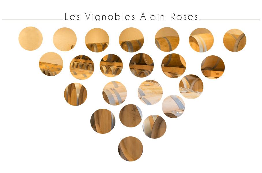 les Vignobles Alain Roses - Château Grand Tayac - Margaux - Château Haut-Bellevue -Moulis - Bordeaux - grappe de raisin